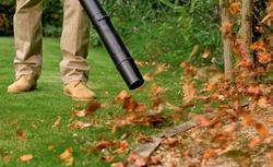 Jesień w ogrodzie: dmuchawa do liści. Sprawdź, jak działa!