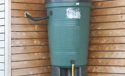 Woda deszczowa - sposób na oszczędzanie wody w domu ekologicznym